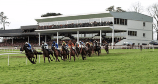 Today's Ratings, OMM's and New Edge selections 27/10/20